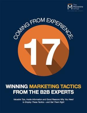 17-winningmarketing-tactics-b2b-experts